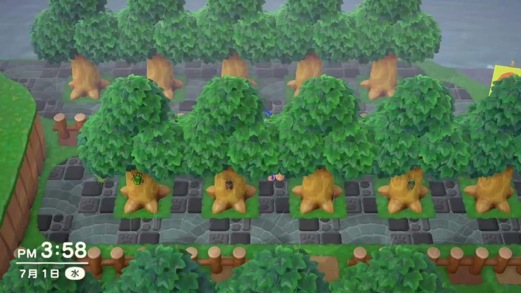 セミ の 出 あつ 森 ない 抜け殻 【あつ森】セミのぬけがらの値段と出る時間【あつまれどうぶつの森】|ゲームエイト