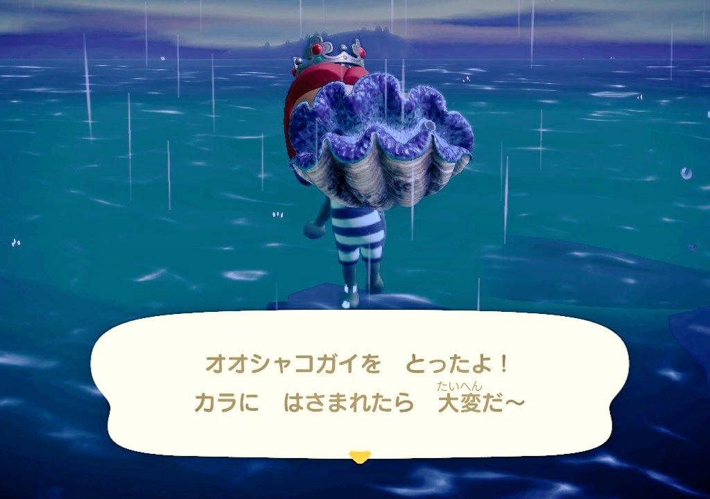 あつ 森 ダイビング