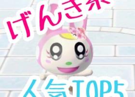 【げんき系(アタイ)人気ランキング】TOP5みんなは誰が一番好き?